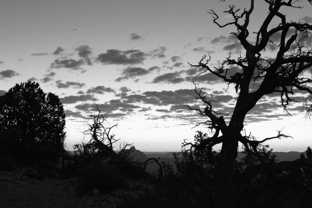 Arizona, BW, Grand Canyon, USA