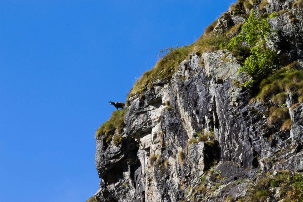 France, Hautes Alpes, Valgaudemar, Wandern