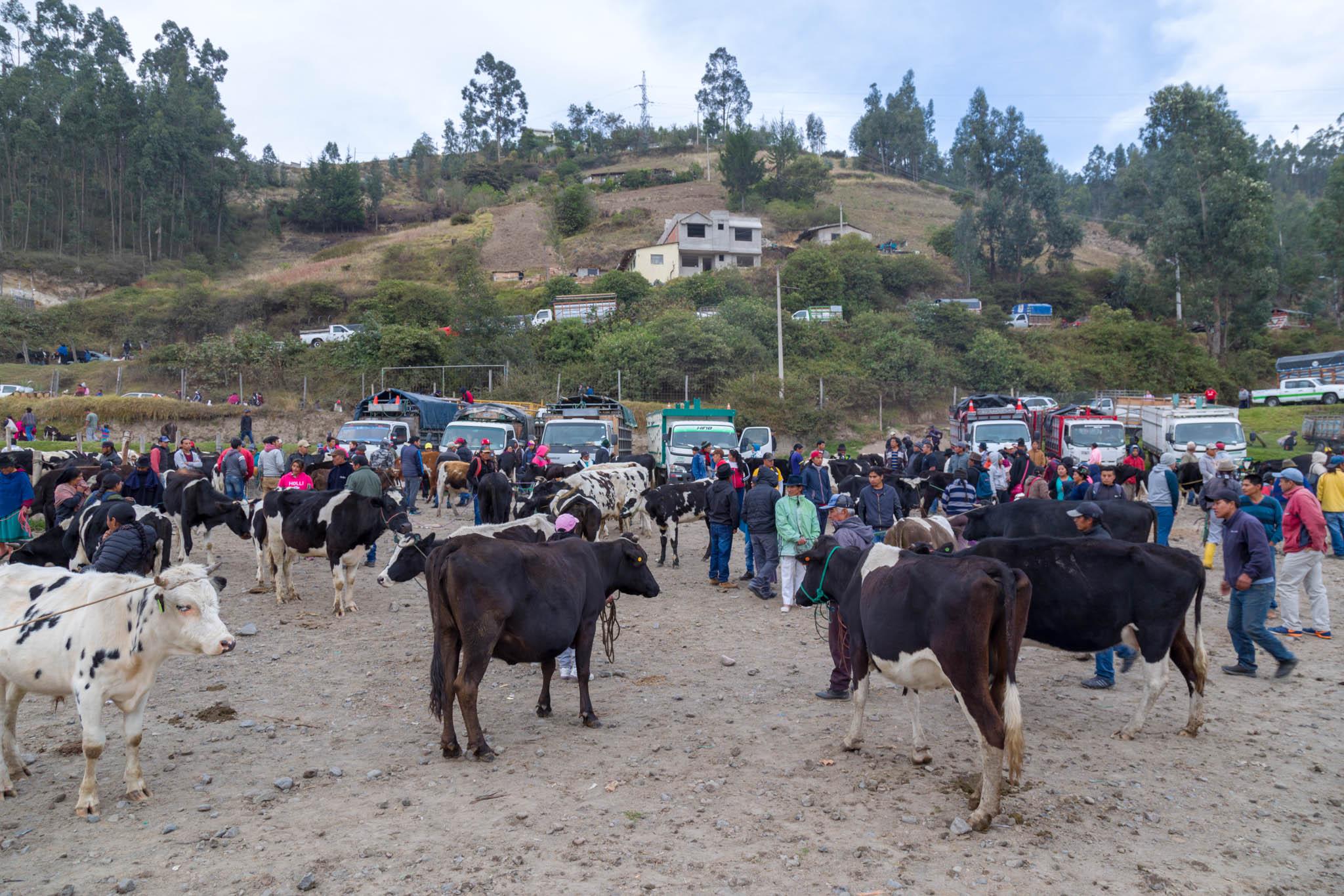 Otavalo Oct 2018