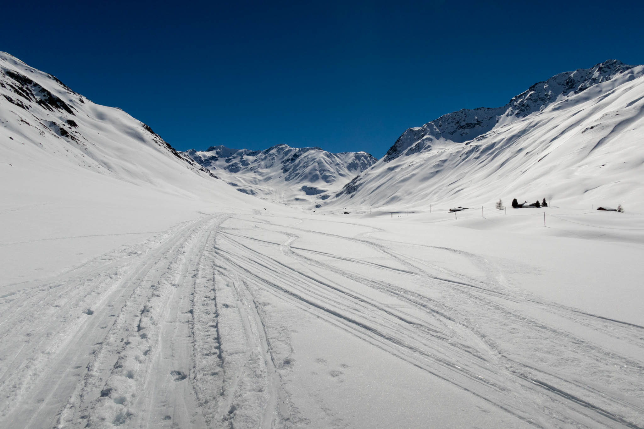 Grialetsch Mar 2019