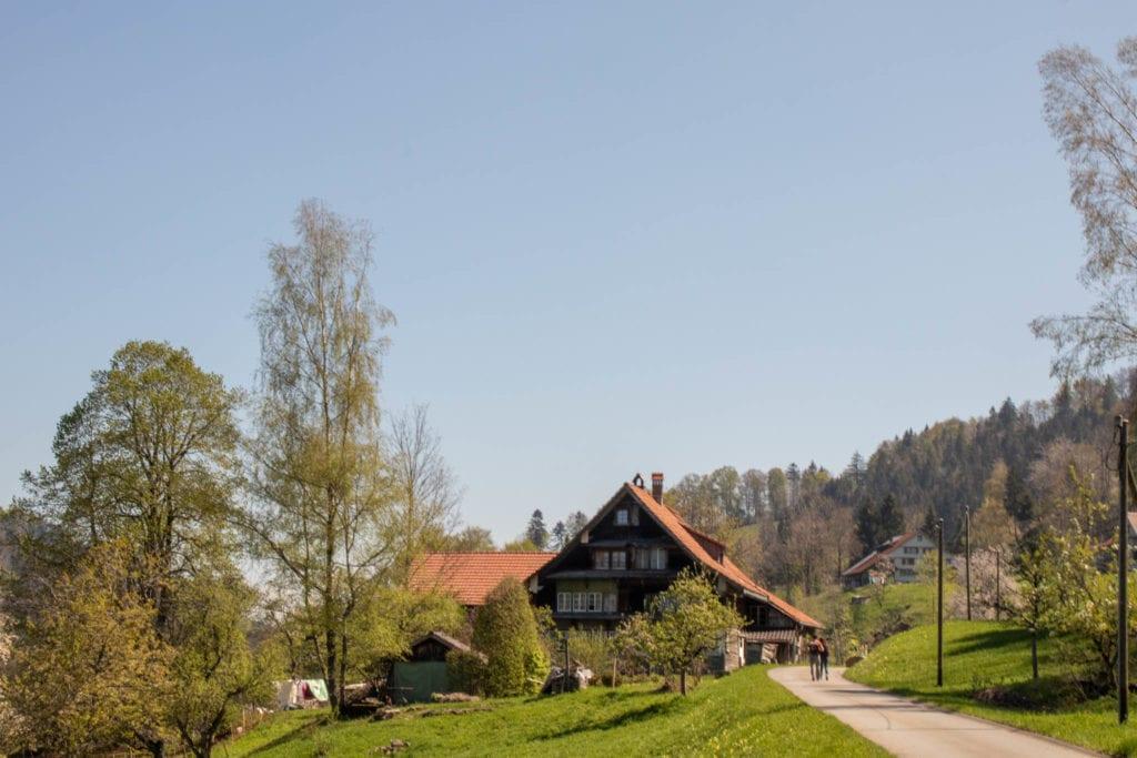 Hörnli, Schweiz, Wandern, Zürich